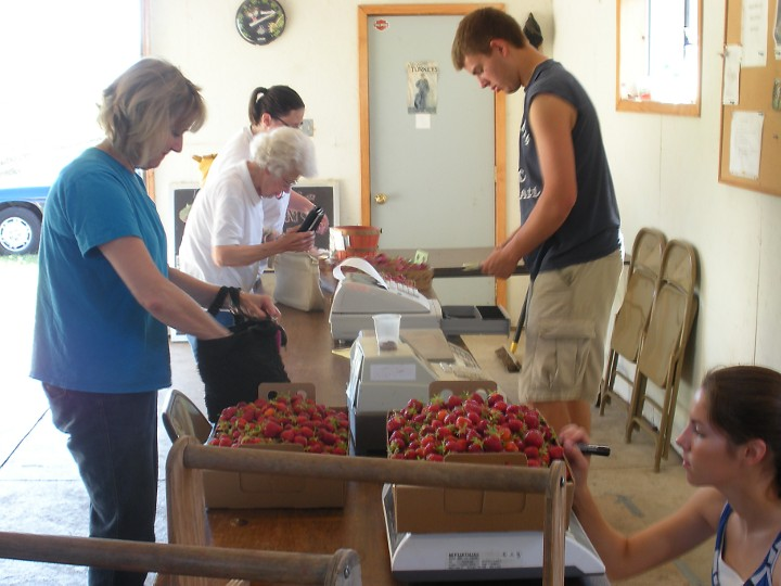 Close up of customers paying for the strawberries they just picked